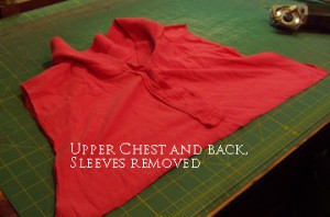Upper chest and back, with placket
