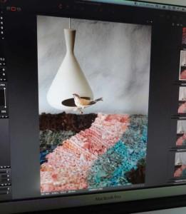 Checking the Pink Swish image.